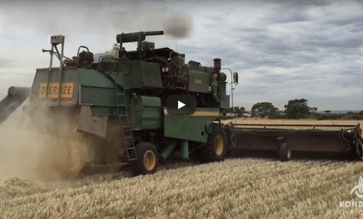 Uma colheitadeira elétrica feita na Austrália