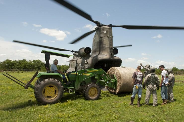 Helicópteros militares alimentando vacas?