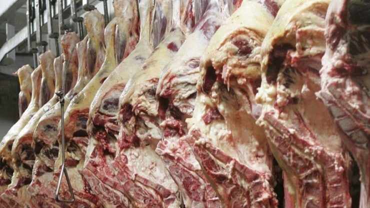 Frigorífico da Bélgica vendia carne de 12 anos para o Kosovo