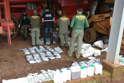 Operação do IBAMA mira em arrozeiros do Rio Grande do Sul e provoca incertezas em toda a cadeia produtiva