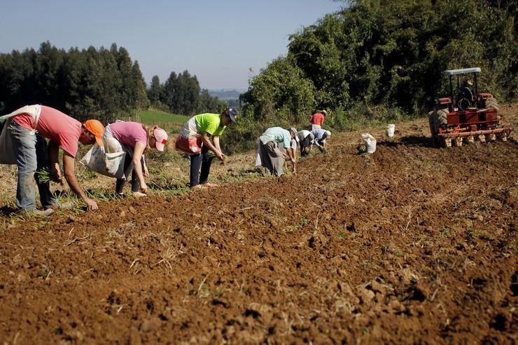 Nota fiscal eletrônica para o produtor rural