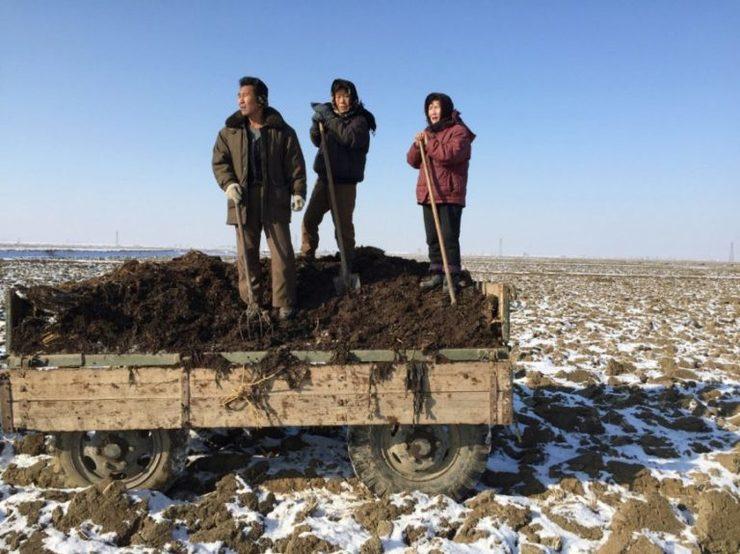 agricultores norte-coreanos