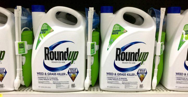 Monsanto processa